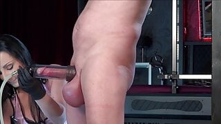 Big Balls and the  sucked Cock