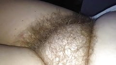 feeling my wifes incredible soft hairy pussy