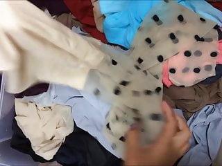 Silver beige adult poodle - Beige pantyhose