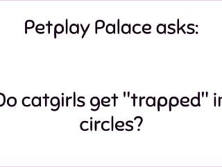Secret amateur circle jerks - Meme busting catgirl in circle bts petplay palace