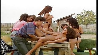 Countryside Orgy