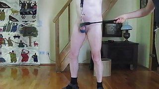 Dog- Control to ball-control & whipp on cock
