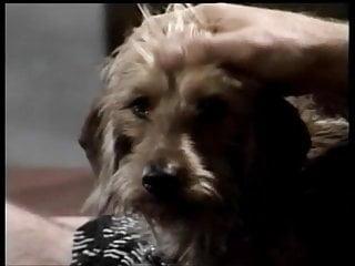 Tip of puppys penis swollen Puppy love 1993