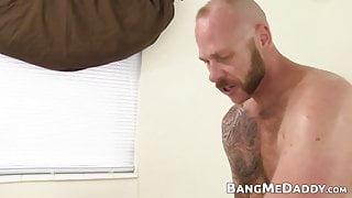 Macho daddy fucking curly bottom cutie bareback