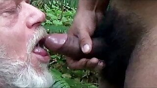 Forest Blow Job