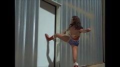 Linda Carter, Wonder Woman - Edition Job, beste Teile 25