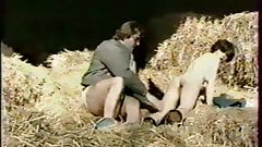 Anthologie de la sodomisation (1985)