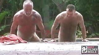 Mature hot bears romance and