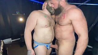 Beefy bears poppers trainer