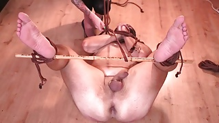 Dominatrix Nika ties up her pig slave with ropes