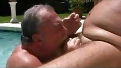 Grandpa Bears Fuck Pool Side