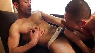 Muscular Japanese Men Fuck