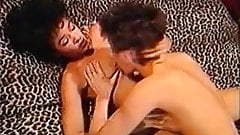 Nikki Knights Free Porn Star Videos 52 Xhamster