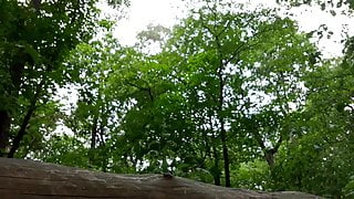 Am 19.06.2018 - Nackt im Wald