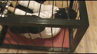 Rigidcuffed slave in a cage