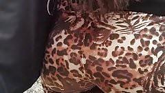 leopard leg2