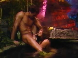 Film erotica Ashlyn gere and peter north - swedish erotica vol. 86