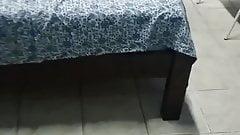 Coroa Stela Cassia Rocha com dois machos no quarto azul