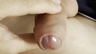 Horny Forskin