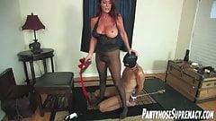 Mistress Rachel Steele femdom pantyhose domination