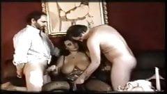 Vintage Hot Sex 293