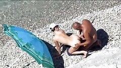 Kama Sutra on the beach. Doggi