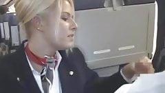 Helpfull Stewardess