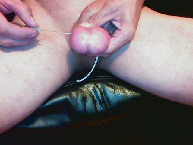 Hodensack piercing