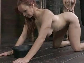 Lusty puppy gay porn - Best puppy in the business