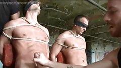 Cum and bondage compilation