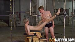 Tied up twink sucks it well before his asshole gets impaled