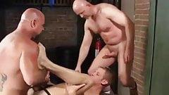 Ike Adams, Steve Hurley and Tony Bishop (DH2 P2)