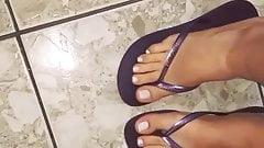 Sara Frazine Feet Chinelo Roxo