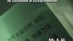 Guardone di prostitute coreane