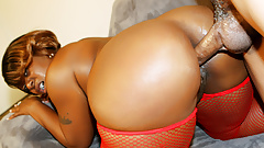Juicy Ebony Brownie Deluxxx Gets Plowed