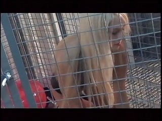 Caged women blowjob galleries Gay girls in cage licking cunt