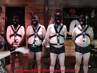 Bdsm phoenix az - Goddess phoenix mistress alice cbt slave educational class
