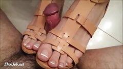 Shoejob Desires-Brown Wedges Shoejob