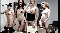 Class full of trannies for this lucky teacher