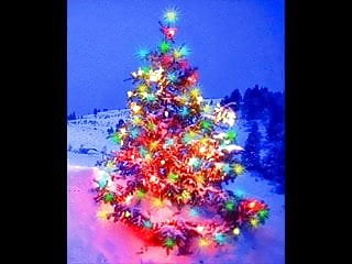 Bryan hawn gay - Bryan adams - christmas time