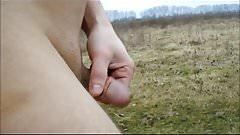 Nice close-ups of my dick outdoors