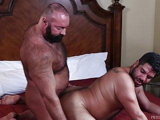 Bear back porn