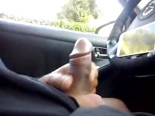 Mature season Dickflash in my car. first of the season
