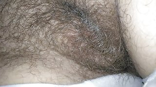 I am not shaved