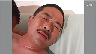 Sapporo Daddy 4