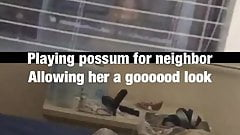 Playing possum for neighbor