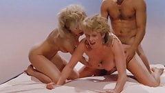 Labyrinthe du plaisir (1986)