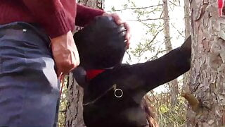 Tied to a tree , masked and outdoor bound deepthroat