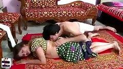 Desi Bhabi und Dever Sexromanze