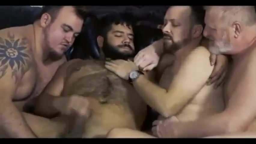 Bear gay sex Gay Bear